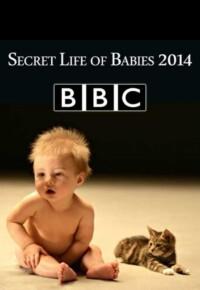 مستند اسرار زندگی کودکان – Secret Life of Babies 2014