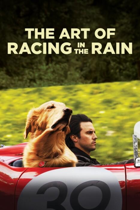 فیلم هنر مسابقه در باران – The Art of Racing in the Rain 2019