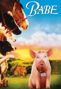 فیلم بیب – Babe 1995