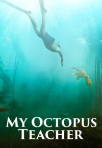 فیلم مستند معلم من اختاپوس – My Octopus Teacher 2020 برنده اسکار